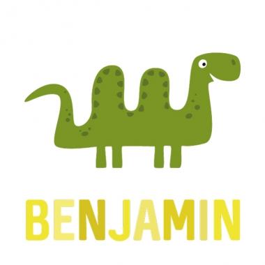 Geboortekaartje Benjamin met monster