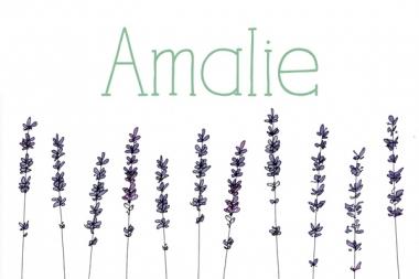 Geboortekaartje Amalie met lavendel