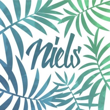 Geboortekaartje Niels met palmtakken